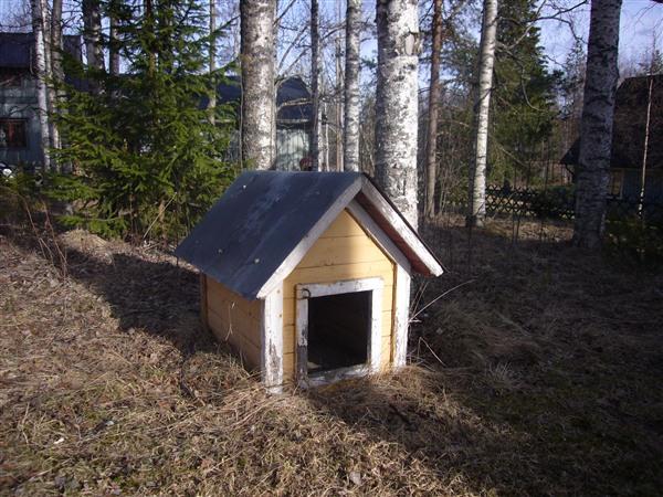 スウェーデン(ドッグ)ハウス