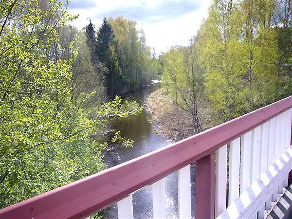 橋から川を望む